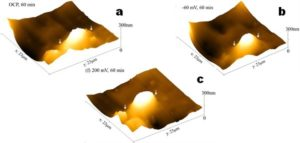 Figure 2 Electrochemical AFM images of the composi