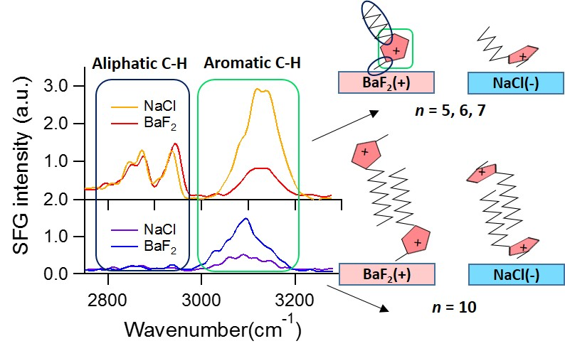 Figure 1. SFG spectra of [C<sub>n</sub>C<sub>1</su