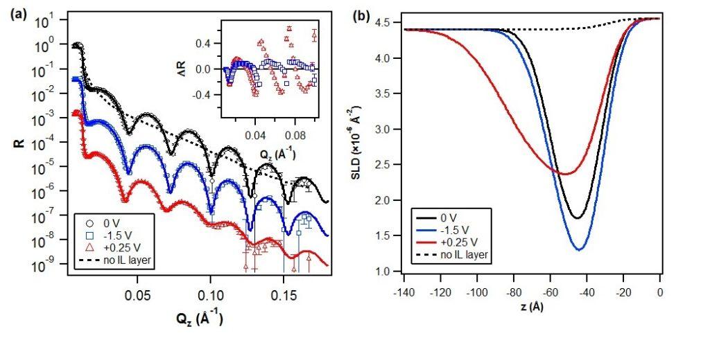 Figure 1. (a) Neutron reflectivity, R, of 20% w/w